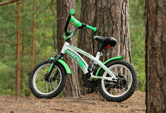 bike-1534025_960_720